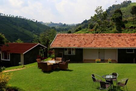 42 Green Pastures - Ruby - Nilgiris