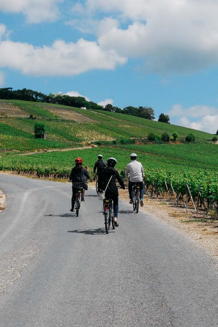 Biking in the amazing Vineyards