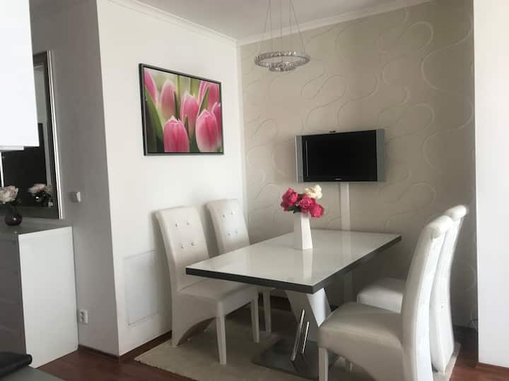 Fully-furnished apartment close to the BA airport