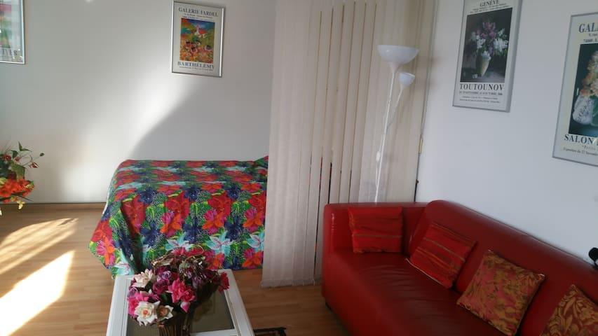 Studio in the heart of Geneva