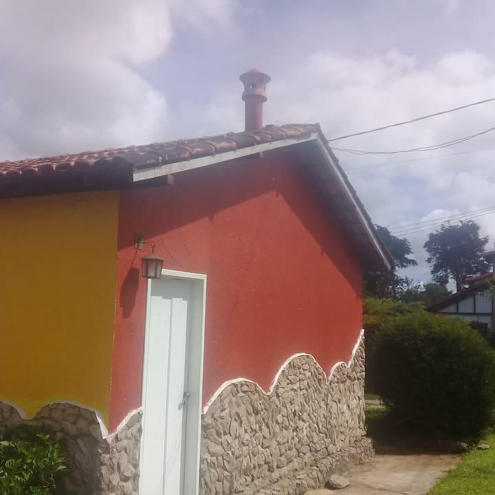 House of Sunflowers -  Lavras Novas - MG