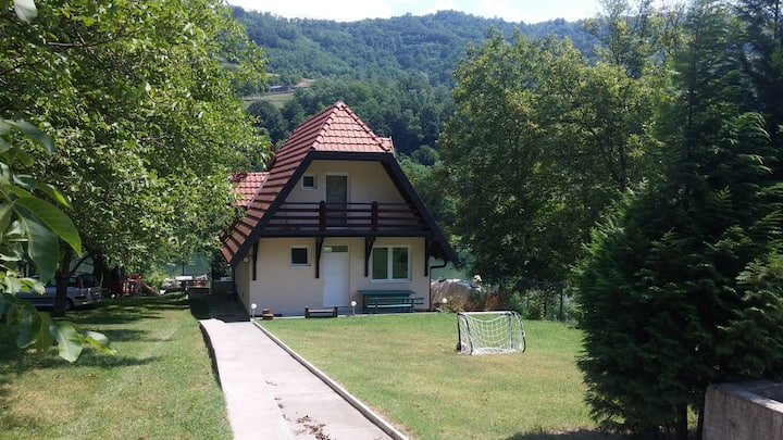 Beautiful villa on Drina river