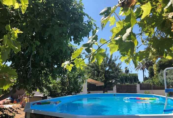 La piscina, sempre curata nei dettagli (ph, pulizia) è larga 9 metri per 4