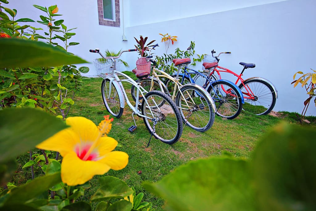Free bicycle for all the guests