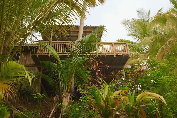 Coconut Cottage Treehouse.