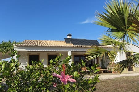 B&B Eco House in the beautiful Valley of Bordeira.