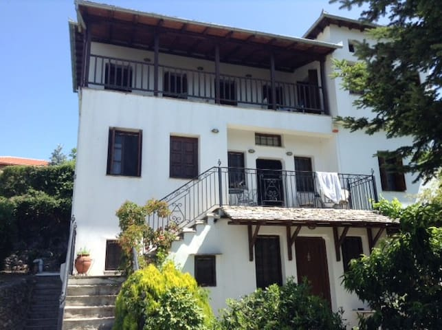 Whole Villa in Mount Pelion - Portaria - Villa