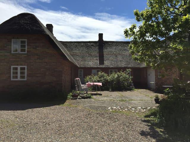 Reethaus Idylle in Westjütland - Ringkøbing - Villa