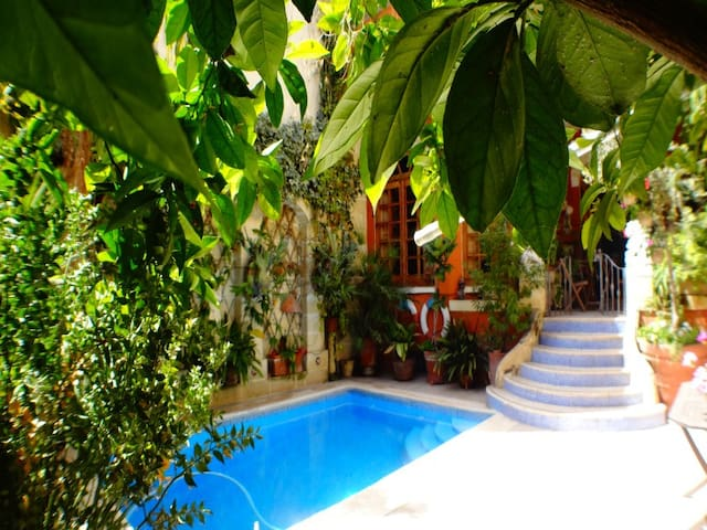 House with Private swimming pool - Qormi - Casa