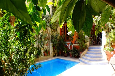 House with Private swimming pool - Qormi