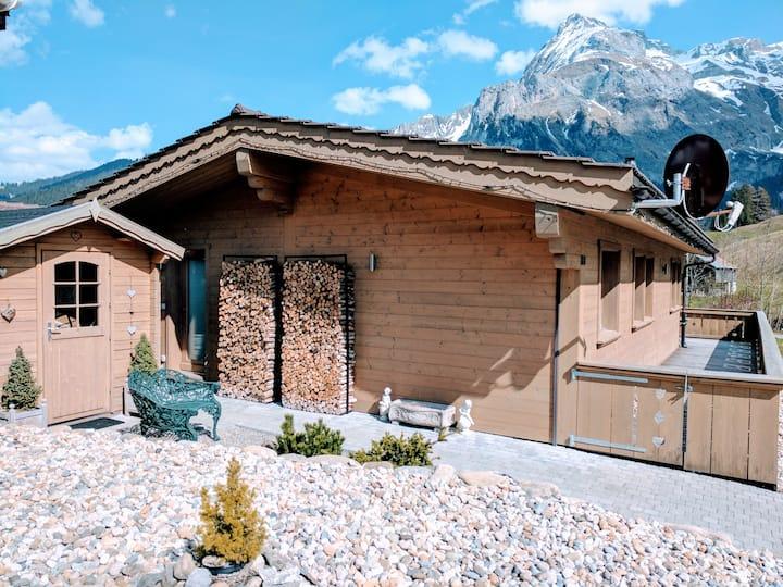 Cozy Scenic Family Chalet Gstaad & Glacier 3000