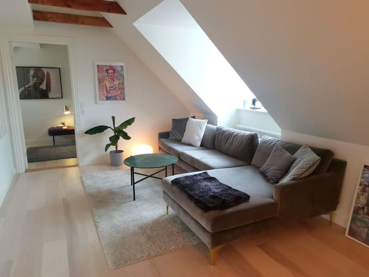 Nice and light loft appartment in Aarhus center