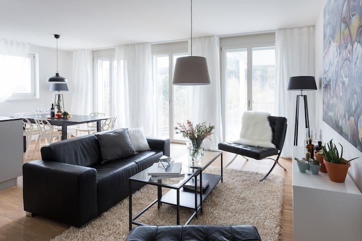 Modern apt. in a cute village close to Zurich (A)