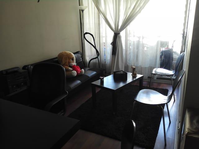 ofrezco dormitorio y living - Santiago