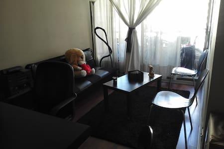 ofrezco dormitorio y living - Santiago - Wohnung