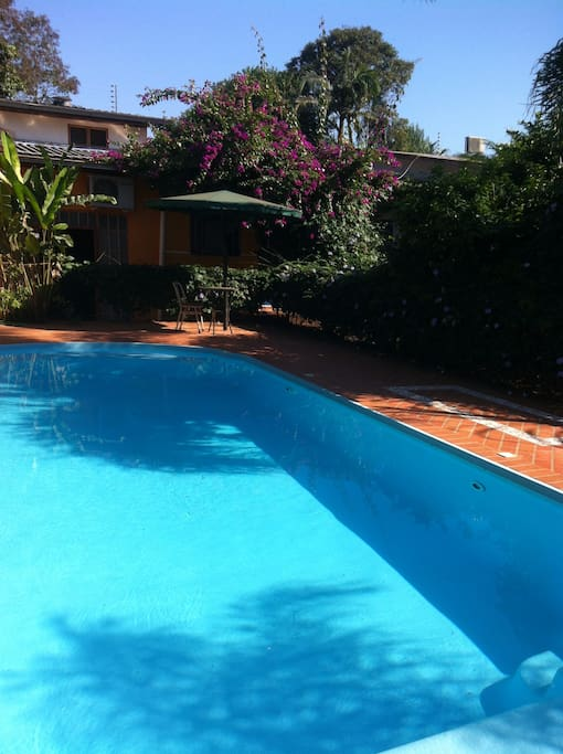 its hot in iguassu ! its cool at the pool !