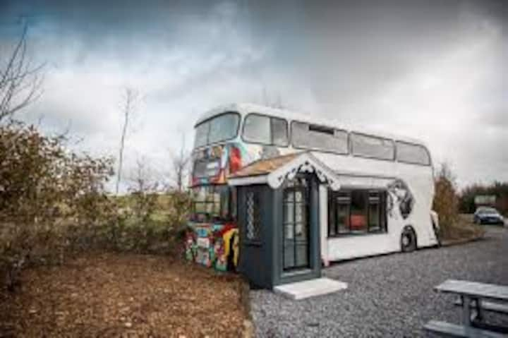 The Bus - Mount Druid