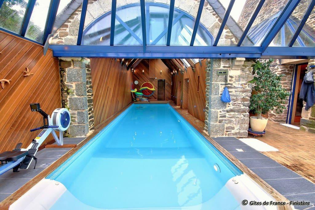 piscine intérieure 3 x 12 m