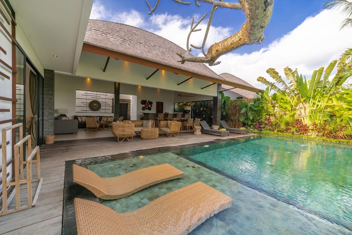 Luxury 2 Bedroom Deluxe Pool Villa With Paddy View