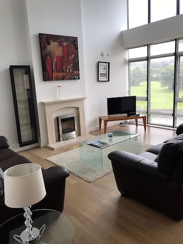 Aikens Wood Penthouse 4