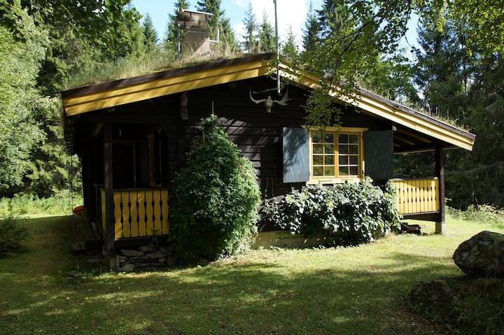 Blockhaus in Fredros, Värmland am Waldsee