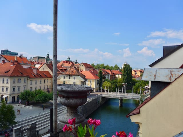 View from the Terrasse on Ljubljanica river
