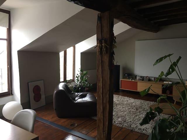Appartement avec vue sur l'Isère