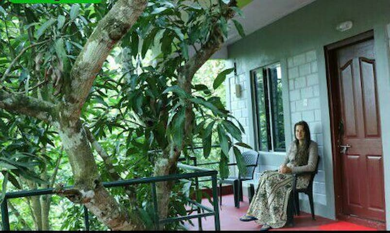 Periyar Green bed and breakfast(home stay)