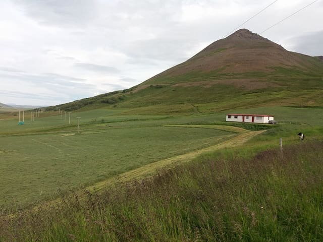 Háls farm, by the mountain
