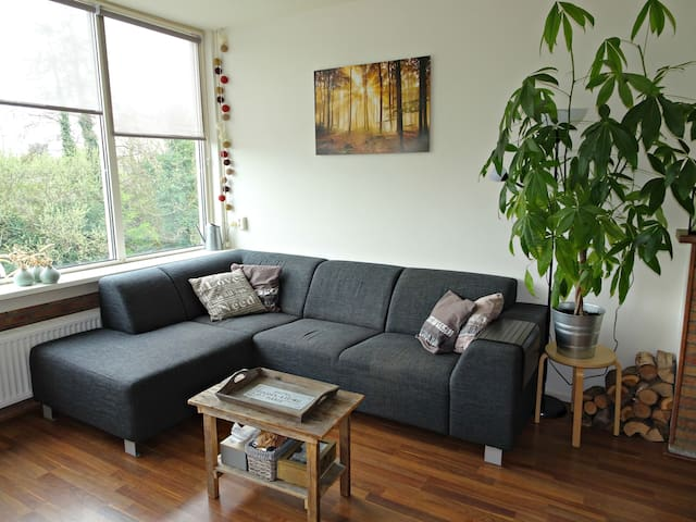 Beautiful, spacious and light 4-room apartment - Leiden - Apartament