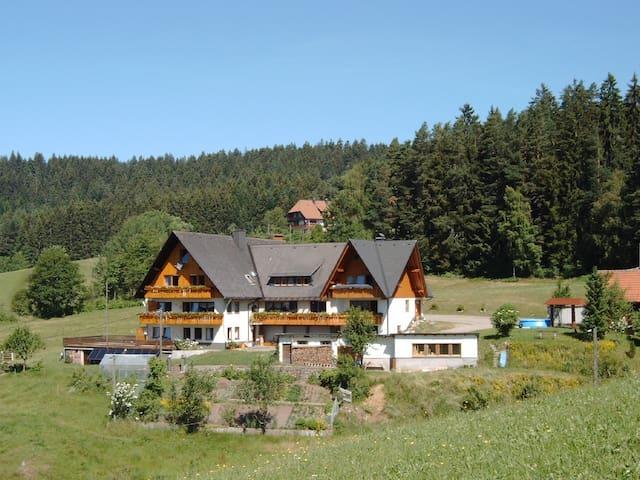 Sonnige Ferienwohnung im Mittleren Schwarzwald
