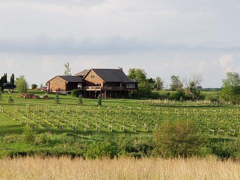Cabin Overlooking Vineyard