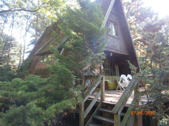 Leśna chatka - Kania Polska - Dům
