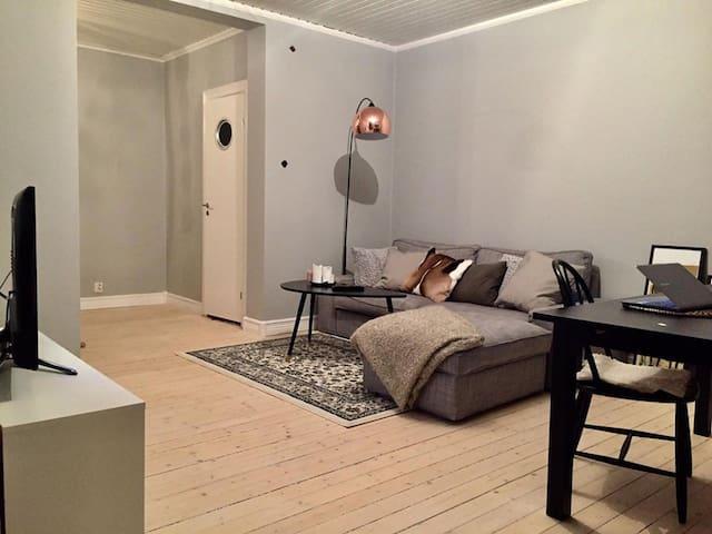 3:a i Norrköping / 2 bedroom flat in Norrköping - Norrköping - Pis