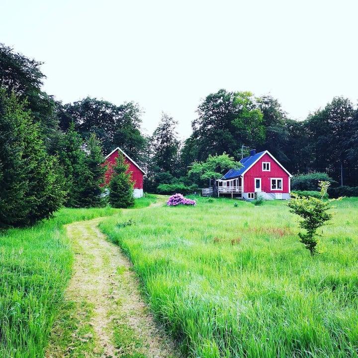 Cosy house in green surroundings near Vallåsen ski