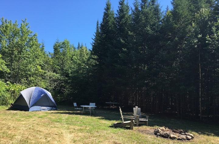 Private pre-pitched campsite on Yellow Birch Farm