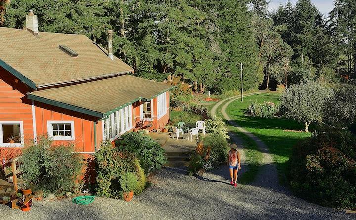 Classic Farmhouse on acreage