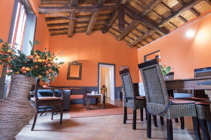 Agriturismo Borgo Spagnoli - App. Muffa Nobile