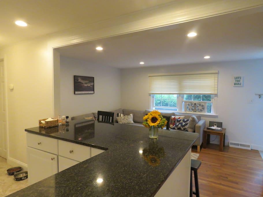Open floor plan: kitchen/family room