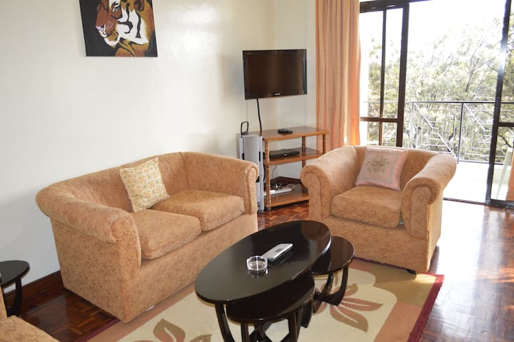 A4 Samra 2 bedroom Apt fully furnished serviced