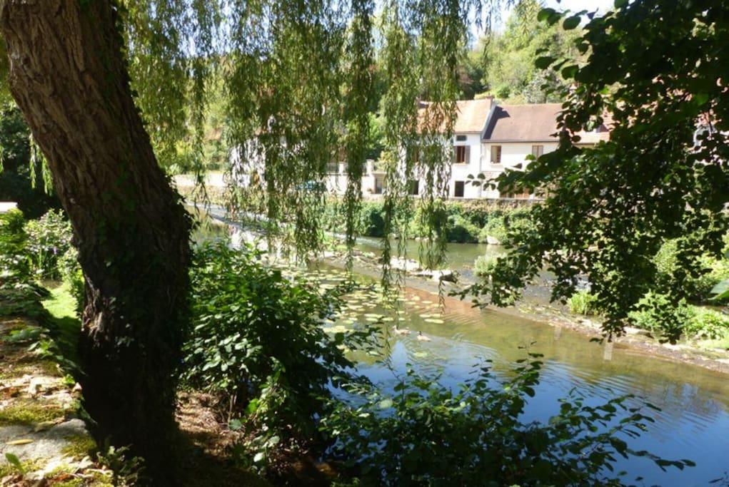 Au bord de la rivière l' Armançon