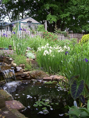 Relaxing waterfall & pond garden, wonderfully soothing for pondering Life.