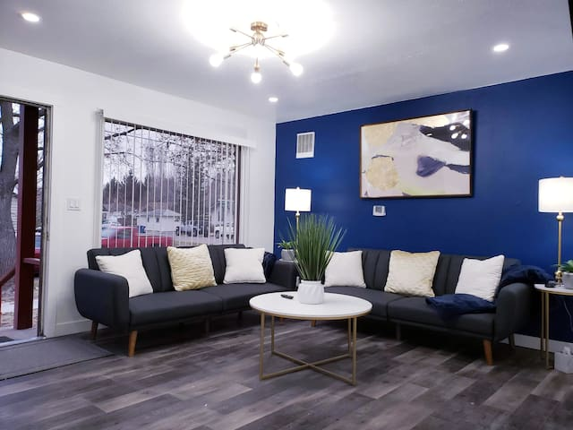 *NEW*DOWNTOWN on BSU CAMPUS 2BEDS FULLY REMODELED!