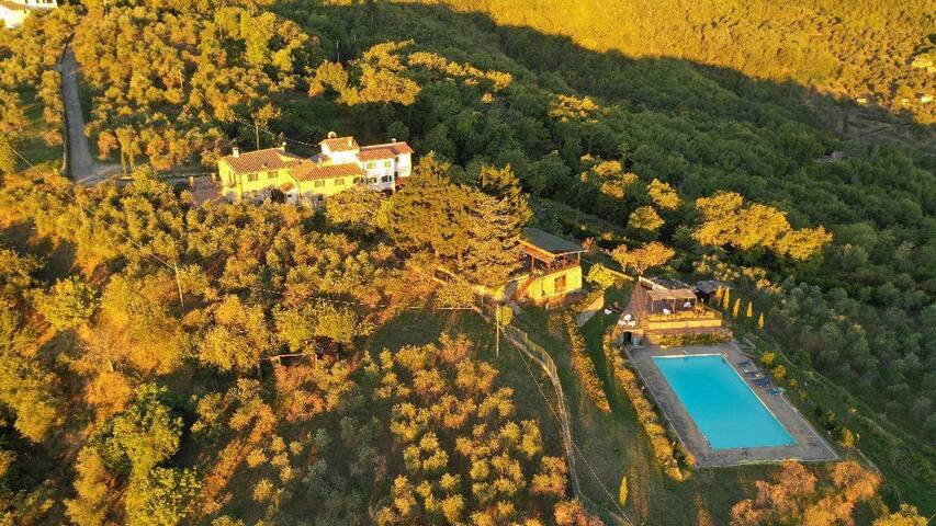 Tuscany: Villa Valdarno Chianti private pool