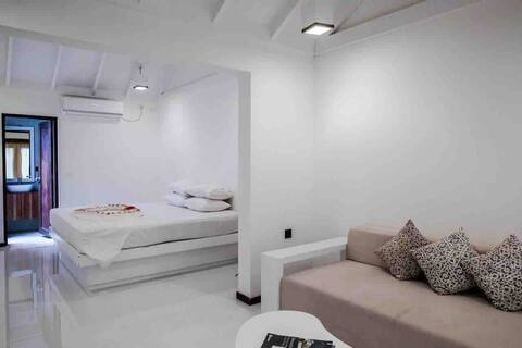 Luxury 1 room Apartment