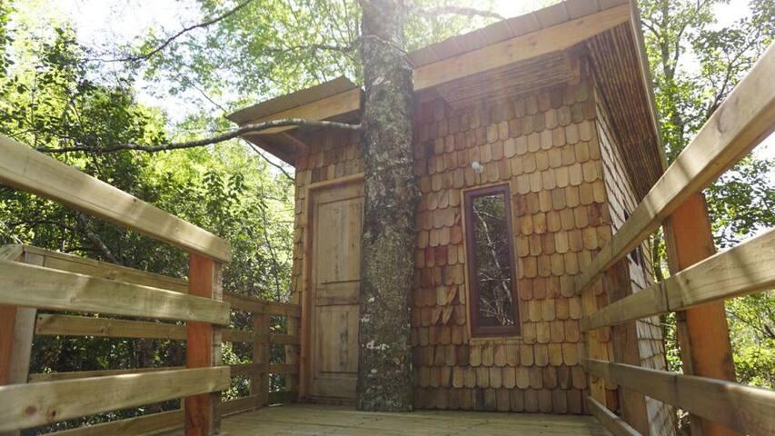 Habitacion triple 4