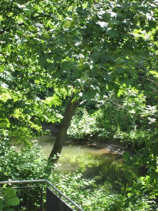 Der Fluß vor der Terasse