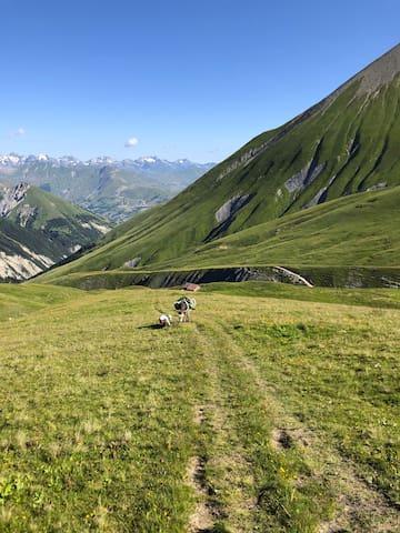 Été / Ballade avec un âne. Les Montagnes de la Maurienne, et la chaîne de Belledone. Activités : Escalade, parapente, canyoning, VTT, Alpinisme, randonnée, pêche, et autres activités de montagne