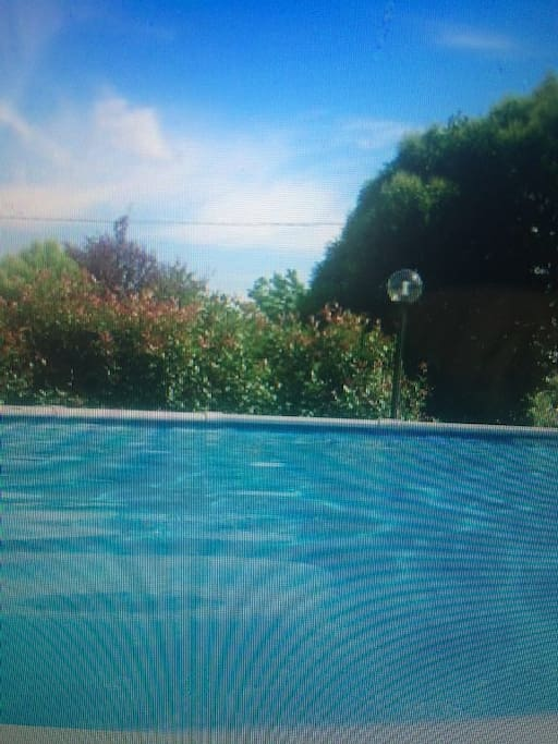 The sun heated above ground pool at Amoreto's - Roman's House
