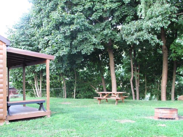Riverside Cabin rental on the Allegheny River.#2